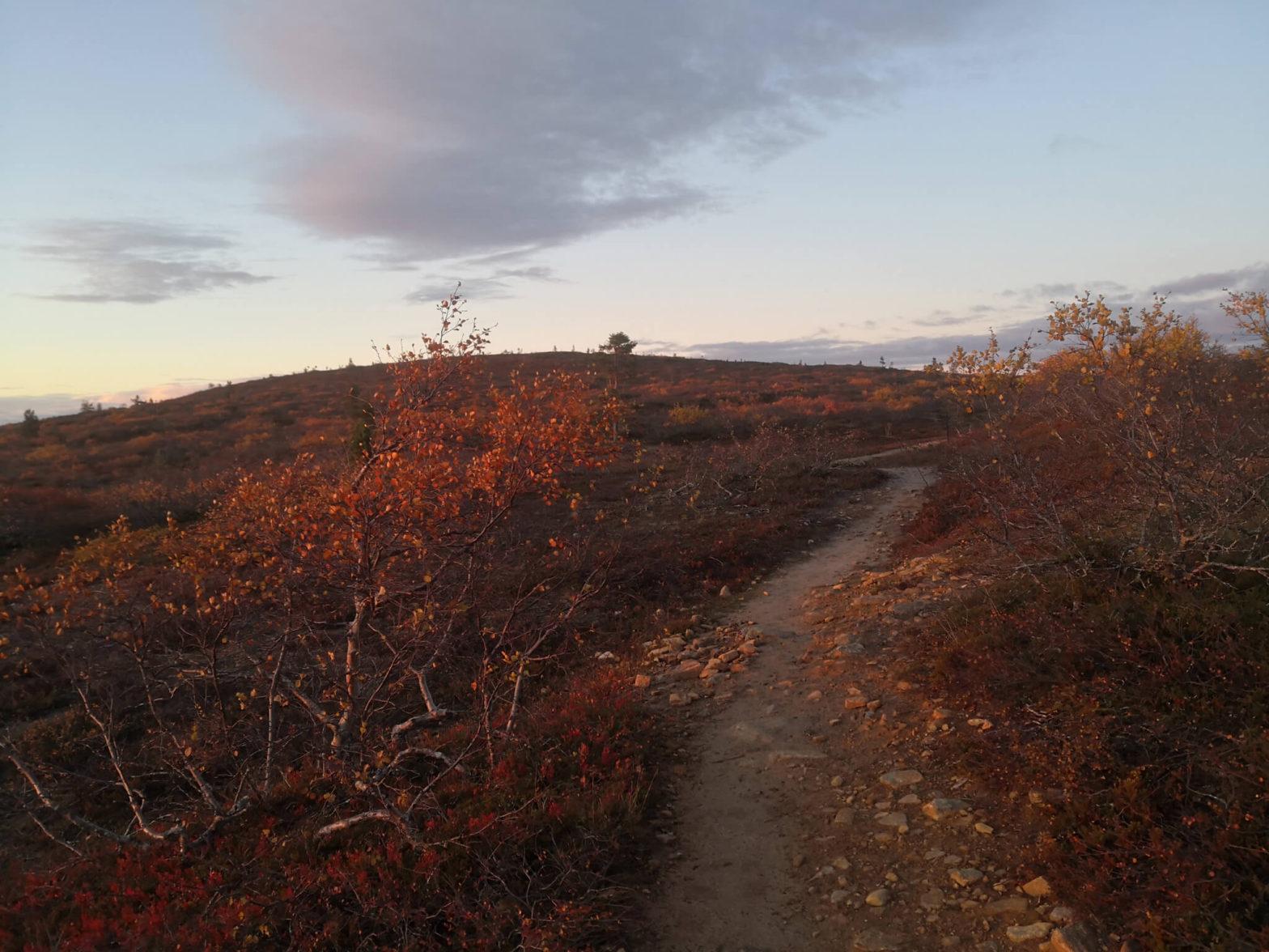 Ruska-ajan polkujuoksuvaellus, Urho Kekkosen kansallispuisto 10.–12.9.2021